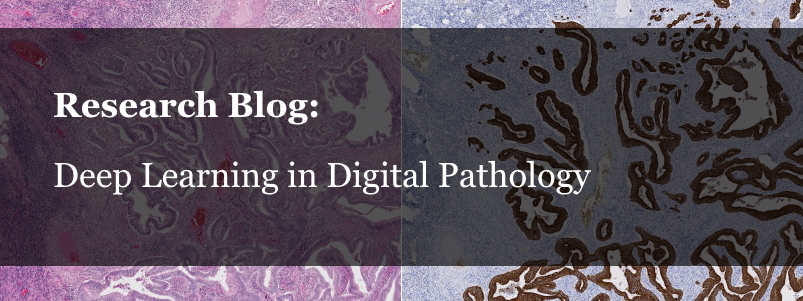 Research Blog: Deep Learning in Digital Pathology